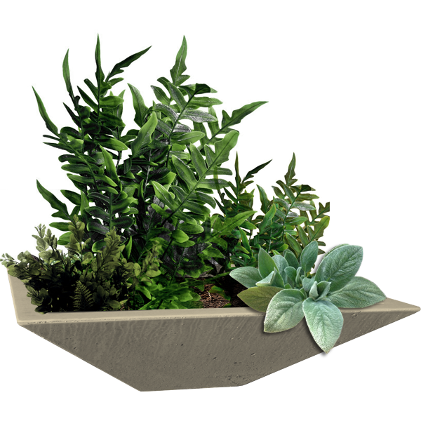 You can use your concrete bowl as a planter!