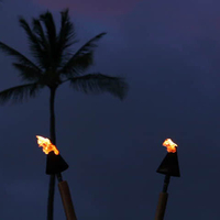 Customer torches